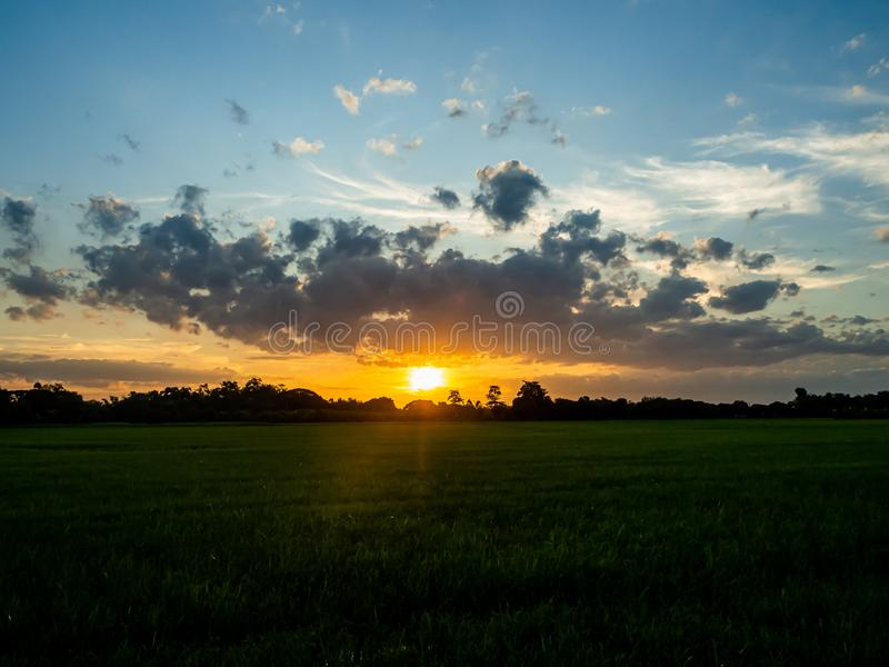 Landscape of suset with Green fields stock photography