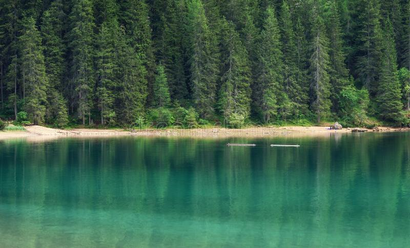 Landscape in the Switzerland. Forest and lake. Reflection on the water surface. Natural lndscape at the summer time. Switzerland - image stock images