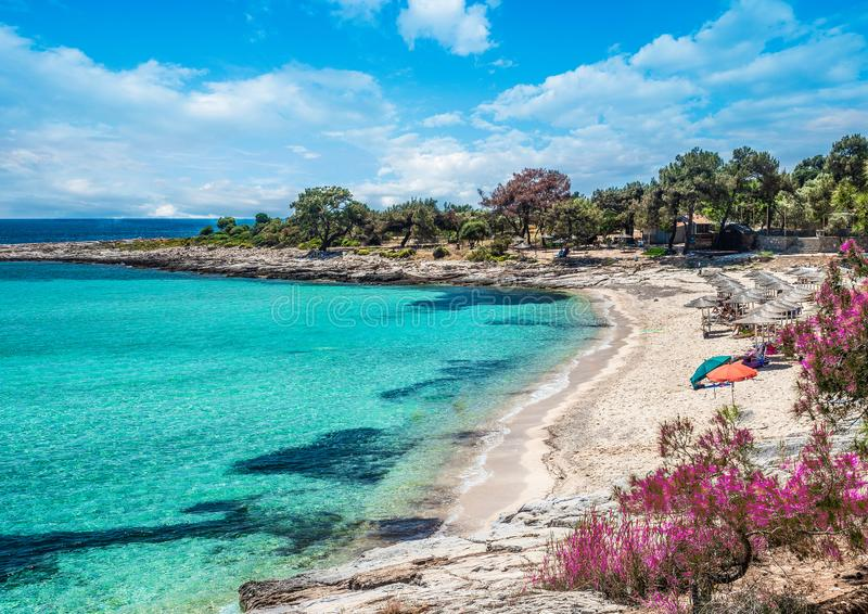 Landscape with Thassos beach. Landscape with Psili Ammos beach at Thassos islands,  Greece royalty free stock photography