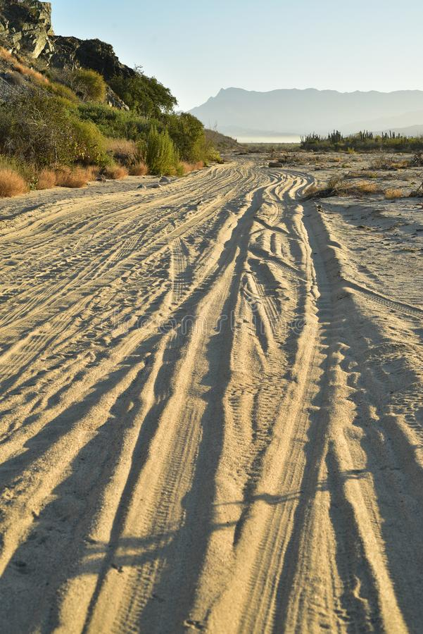 Landscape with tire tracks in beach road tropical morning Baja, Mexico royalty free stock photography