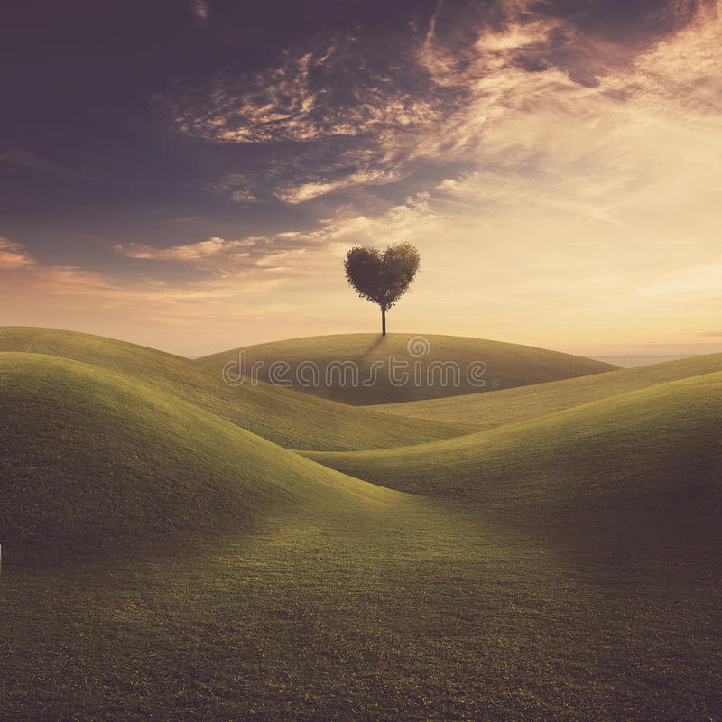 Landscape with tree heart stock image