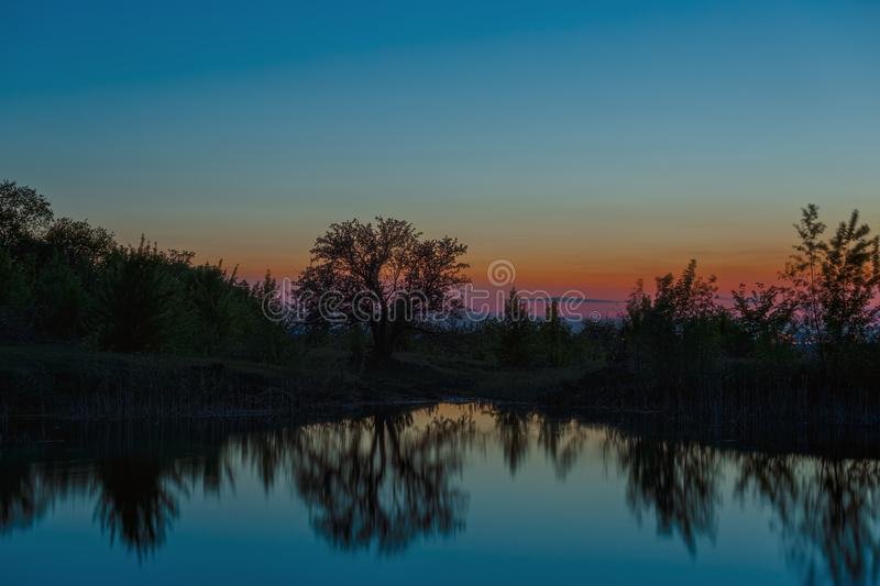 Landscape with a tree on the lake after sunset.  royalty free stock images