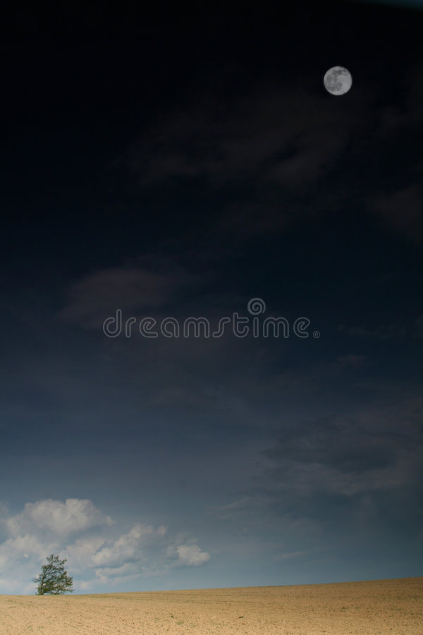 Landscape with tree and moon stock image
