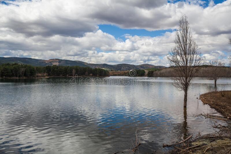 Landscape of trees in calm lake water with white clouds sky reflected. And mountains in background royalty free stock image