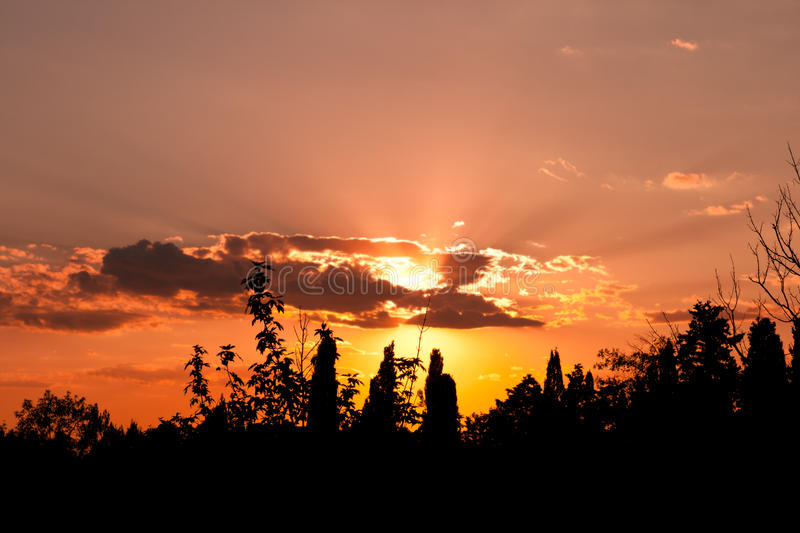 Download Landscape With Trees Silhouette At Sunset Stock Photo - Image: 28760756