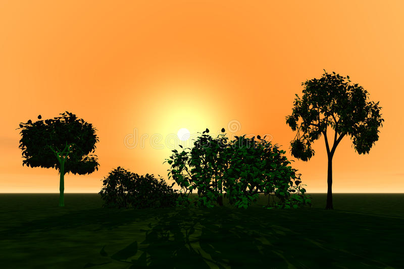 Landscape with trees. Sunset stock photo