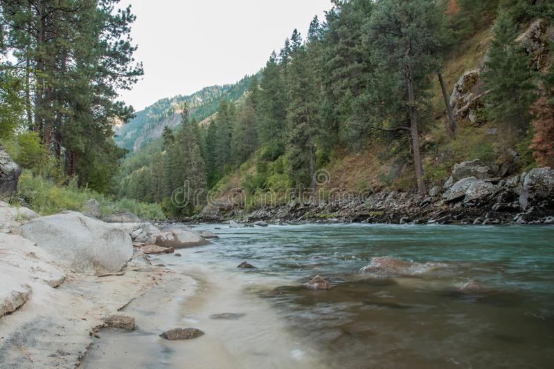 Landscape of turquoise mountain river, sandy beach and dense forest royalty free stock images