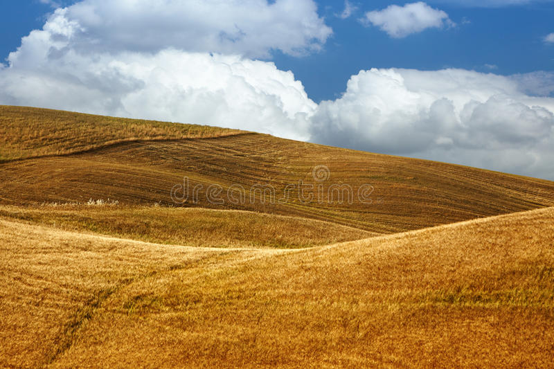 Landscape in Tuscany royalty free stock photos