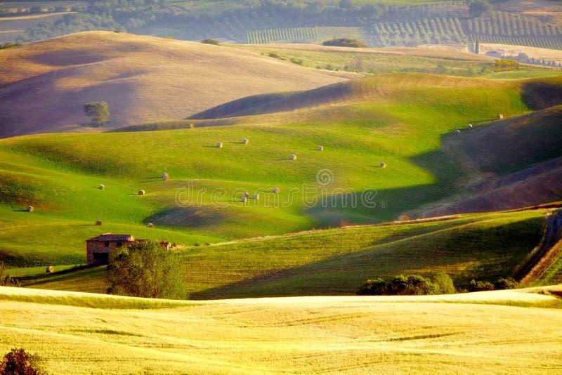Download Landscape in Tuscany stock image. Image of grunge, farmland - 25680397