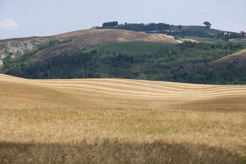 Download Landscape Of Tuscany Royalty Free Stock Images - Image: 9989749