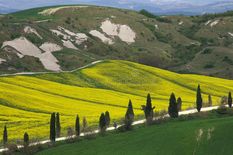 Landscape,Tuscany Val D'Orcia stock photography