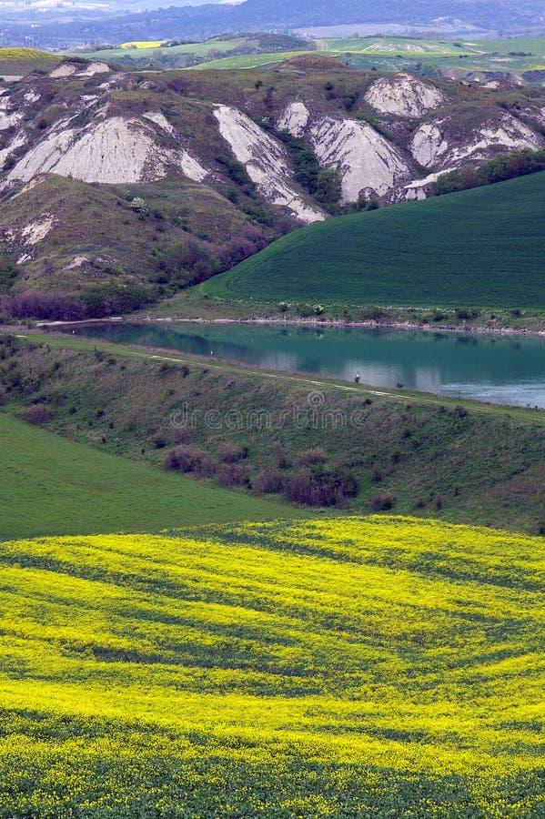 Free Landscape,Tuscany Val D Orcia Stock Photos - 2654463