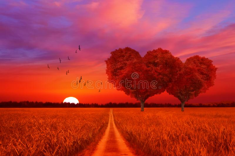 Landscape with two heart trees at sunset royalty free stock photos