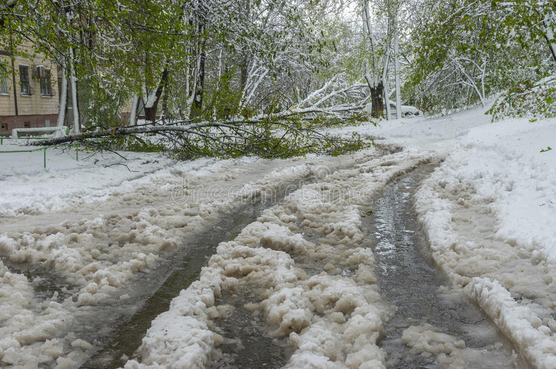 Landscape after unexpected April snow storm in Dnepr city, Ukraine royalty free stock image