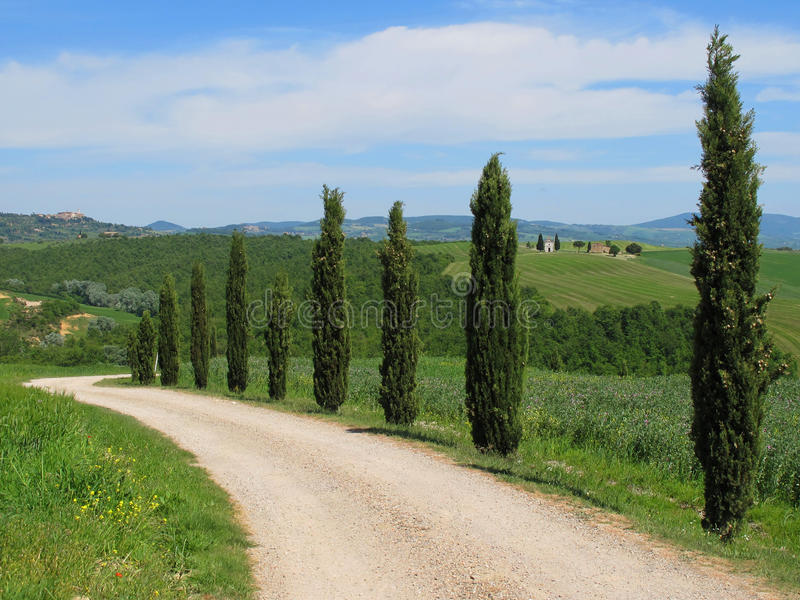 The landscape of the Val d'Orcia, Tuscany stock image