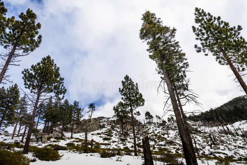 Landscape in Van Sickle Bi-State Park on a winter day with changing weather; south Lake Tahoe, California royalty free stock image