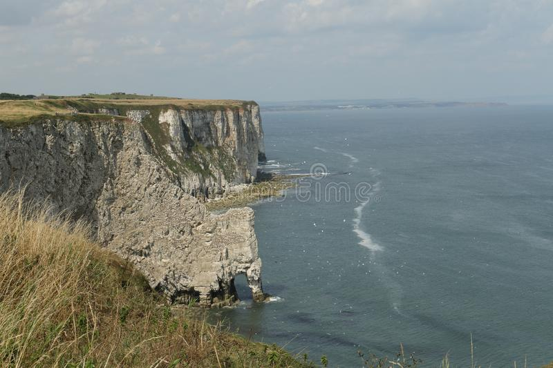 A landscape view of Bempton cliffs, where thousands of seabirds breed on the cliffs. A landscape view of Bempton cliffs, Yorkshire,UK, where thousands of stock images