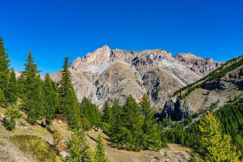 Landscape view of Col de la Cayolle pass and surrounding mountains in France. Landscape view of Col de la Cayolle pass and surrounding mountains in Alpes stock image
