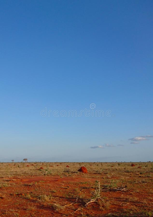 Landscape view of a dried grassland field royalty free stock image