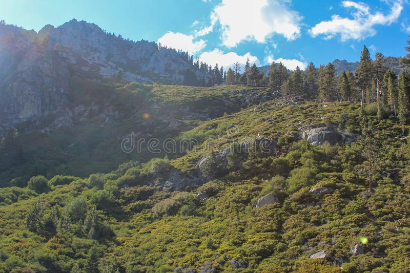 Landscape view of hills near Eagle Falls, Lake Tahoe, California. View of the  hills near Eagle Falls, Lake Tahoe, California royalty free stock photo