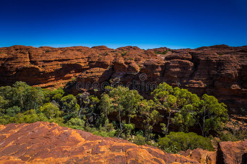 Landscape view at Kings Canyon, Australia Outback royalty free stock photos