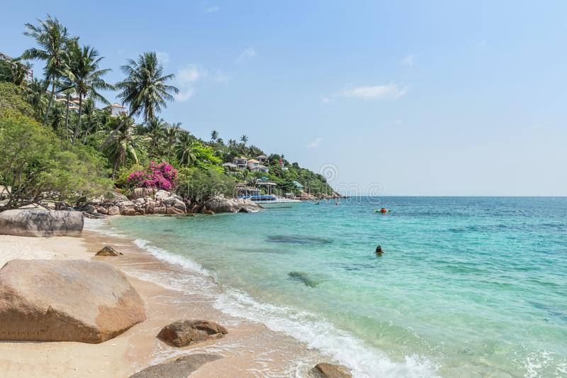 Landscape view of Koh Tao Island beach or Turtle Island under blue sky in summer day. Koh Tao Island is popular famous tourist attractions in the gulf of stock images