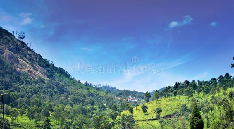 Landscape view of Kotagiri hills stock photo
