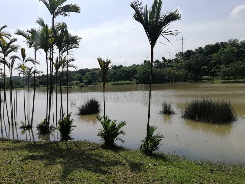 Landscape view of lakeside at Presint 12, Putrajaya royalty free stock photos