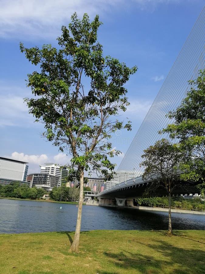 Landscape view of Lakeside Putrajaya, Presint 2, Putrajaya Malaysia stock photo