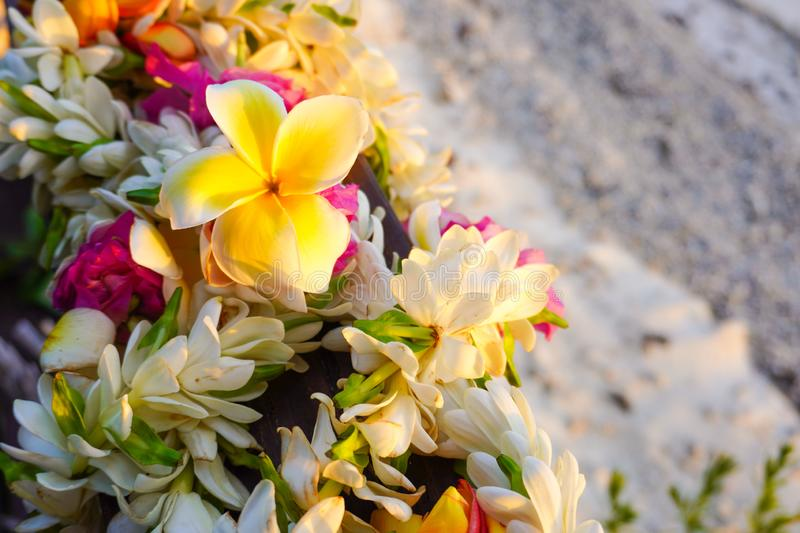 A lei of colorful tropical flowers with a white sandy beach for copy space. Landscape view of a lei of colorful tropical flowers with a white sandy beach for royalty free stock photo
