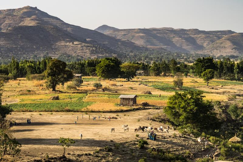 Landscape view near the Blue Nile falls, Tis-Isat, Ethiopia, Eastern Africa. Landscape view near the Blue Nile falls, Tis-Isat Falls, meaning great smoke in stock image