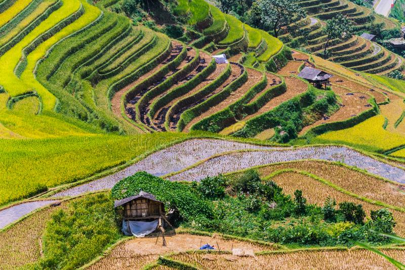 Landscape view of rice fields in Mu Cang Chai District, VIetnam. Landscape view of rice fields in Mu Cang Chai District, Yen Bai Province, North Vietnam royalty free stock photo