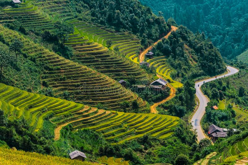 Landscape view of rice fields in Mu Cang Chai District, VIetnam. Landscape view of rice fields in Mu Cang Chai District, Yen Bai Province, North Vietnam royalty free stock photos
