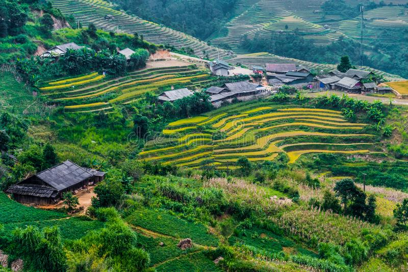 Landscape view of rice fields in Mu Cang Chai District, VIetnam. Landscape view of rice fields in Mu Cang Chai District, Yen Bai Province, North Vietnam royalty free stock image
