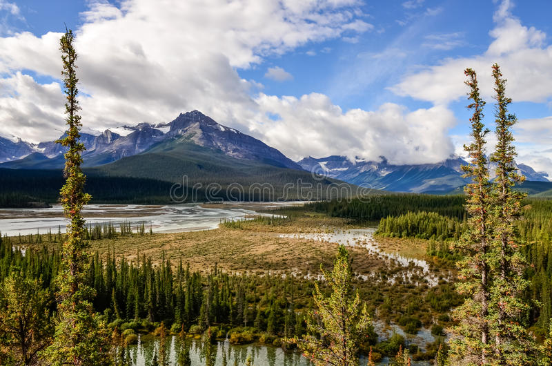 Landscape view of river and montains, Rocky Mountains, Canada. Landscape view of river and montains near Icefield parkway, Rocky Mountains, Canada stock photos