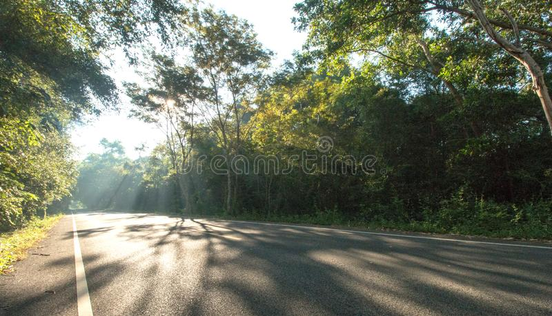 The road on morning and sunrise royalty free stock photography