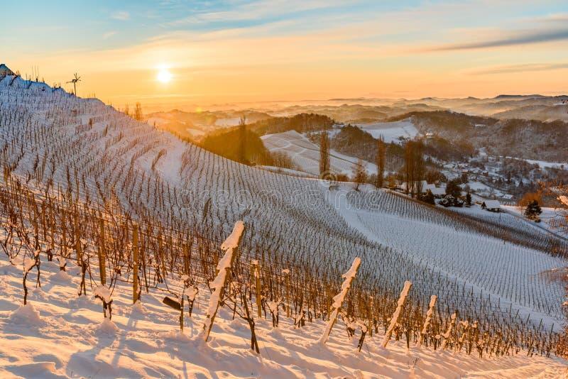 View over the the vineyards an the foggy valleys of slovenia south Styria Sustria Libenitz. Landscape view of sunrise over the the vineyards an the foggy valleys royalty free stock photos