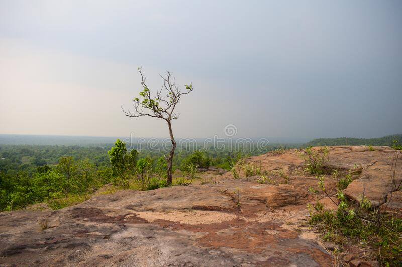 Landscape view of ulapgarh in Jharsuguda, Odisha in India. Ulapgarh is a historical place in jharsuguda, Odisha, India . Research is going on by various Indian royalty free stock photography