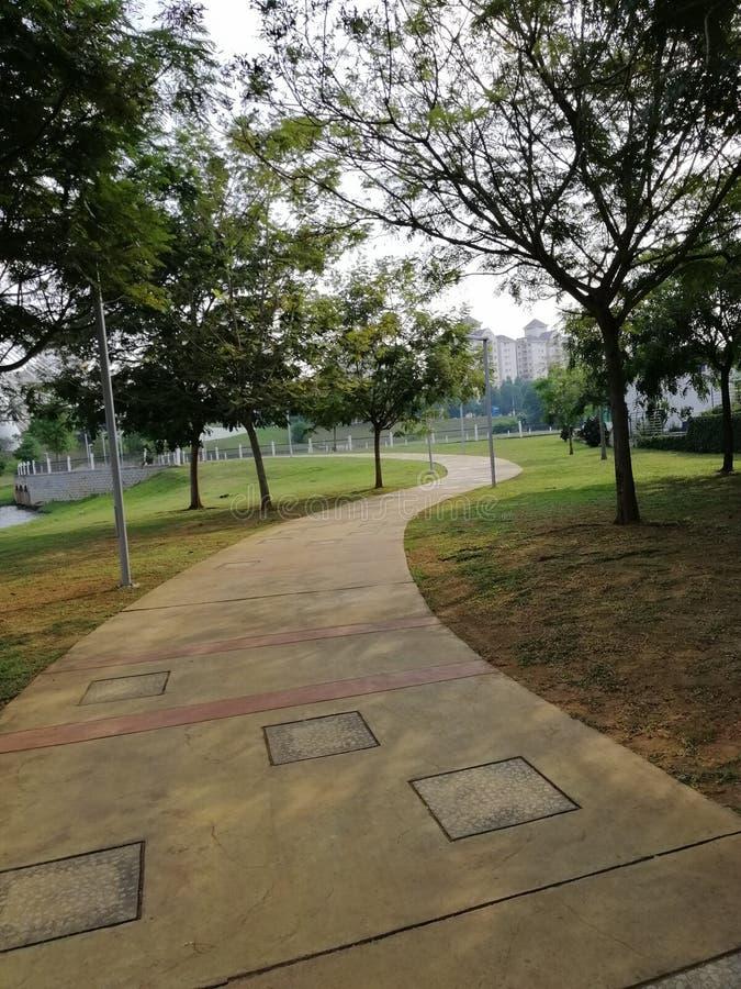 Landscape view of walking pat at Presint 8, Putrajaya. Garden royalty free stock photos