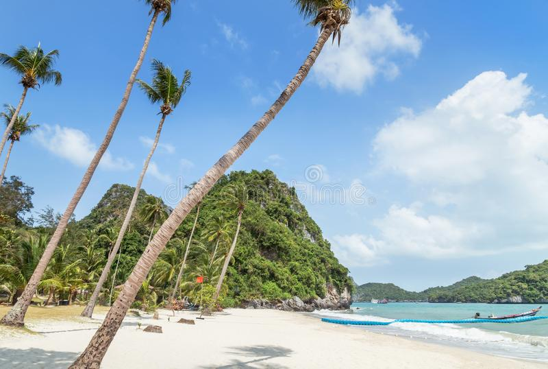 Landscape view at Wua Ta Lap island beach with coconut palm trees in Angthong Islands National Marine Park on sunny day stock image