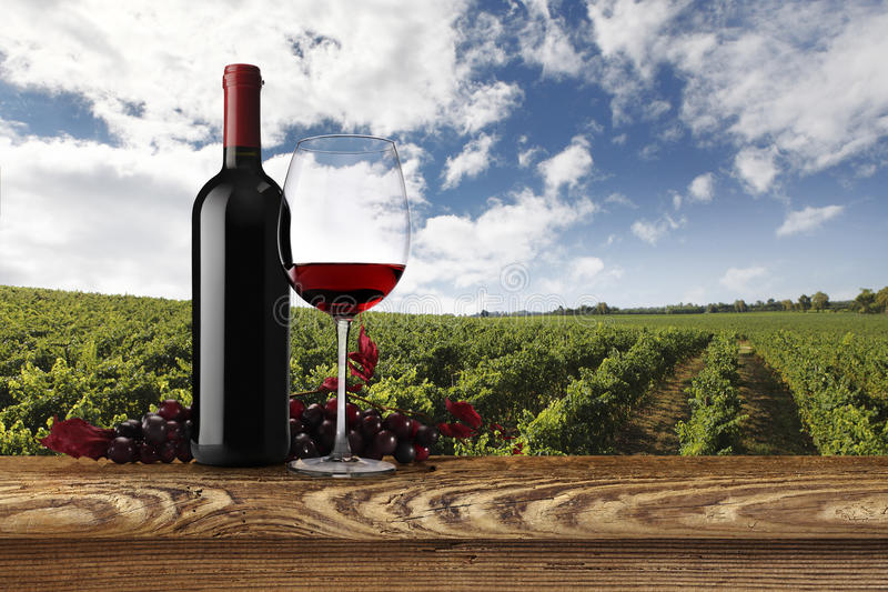 Landscape of vineyards with bottle, glass of wine and grapes stock photography