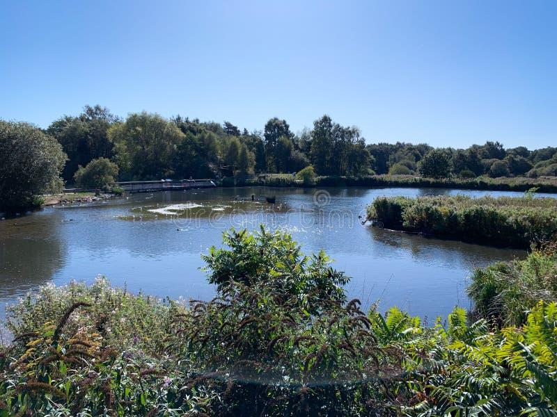 Stunning lake at nature reserve stock photography