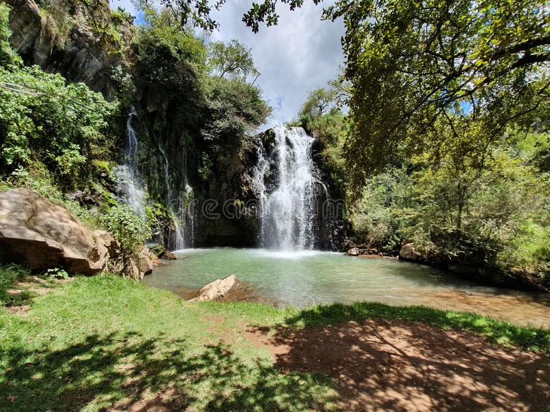landscape with waterfall in mountainous area and temperate forest royalty free stock image