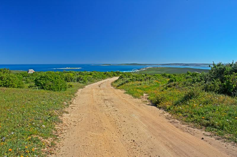 Landscape of wildflowers, sea and sky, Langebaan, South Africa stock photos