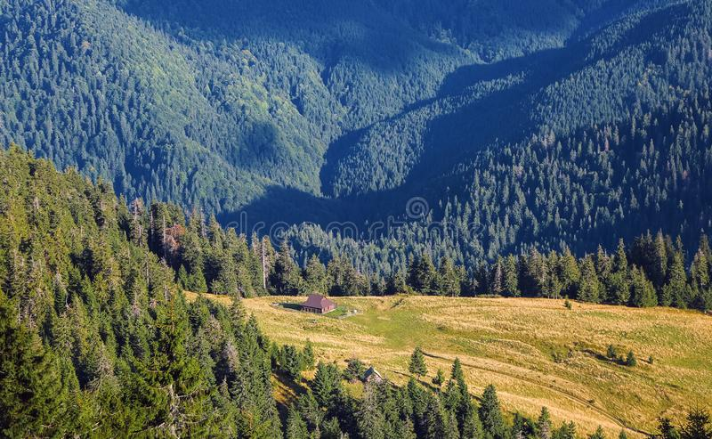 The landscape with the wooden hut and fence on the lawn with green fir trees, high mountains covered by forests. Touristic resort. stock photography