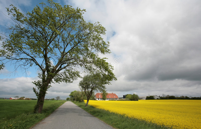 landscape01 duński zdjęcia stock