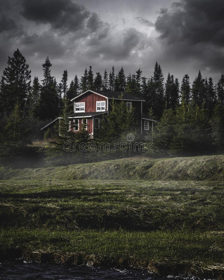 Landscaped cottage in woods. A view of a small, cottage in the woods with moody colorful vibes royalty free stock photos