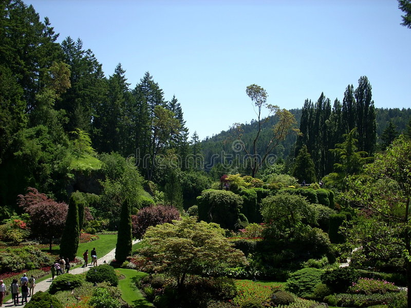 Download Landscaped Park In Forest Stock Images - Image: 5560814
