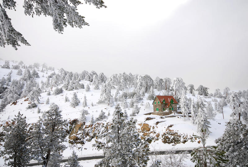 landscapes зима стоковые фото