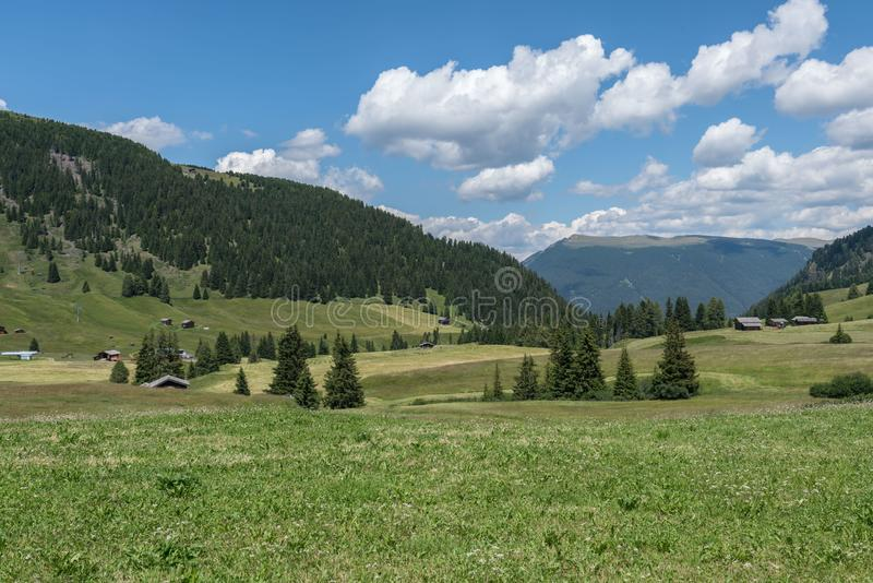 Landscapes on Alpe di Siusi with Sassolungo or Langkofel Mountain Group in Background in Summer, South Tyrol, Italy royalty free stock photo